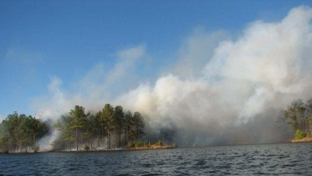 Lake Carolina fire