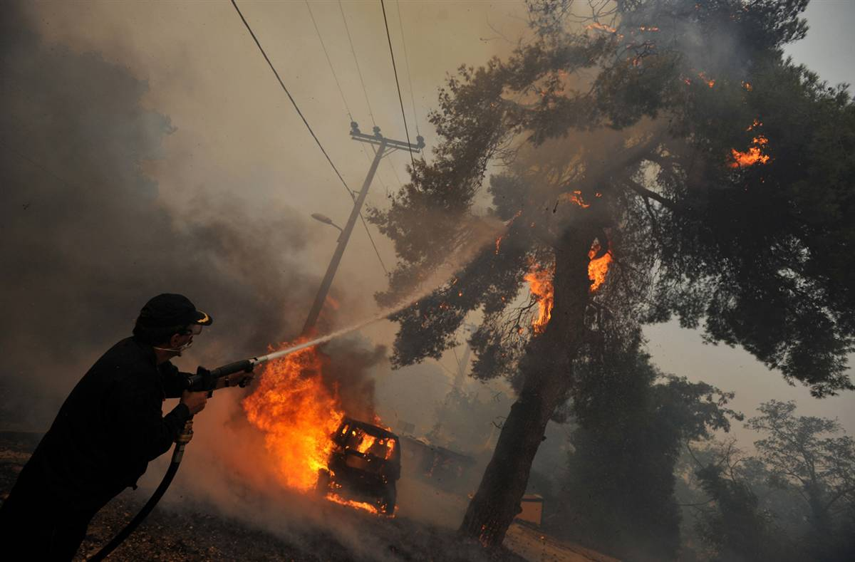 Greece_fires_7_firefighter-tree.jpg