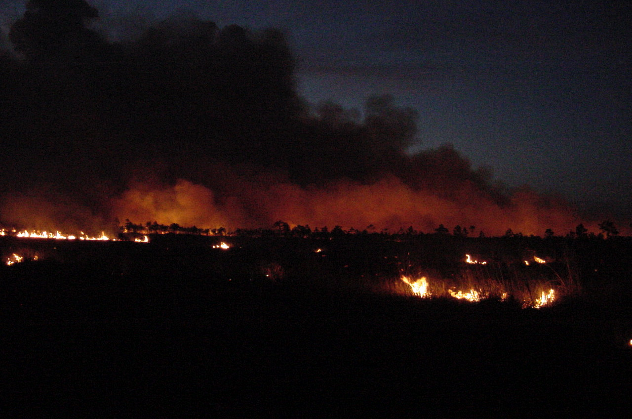 File photo of a prescribed fire in Everglades National Park. NPS photo.