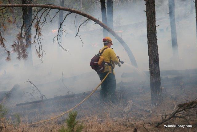 Forest fire smoke. Photo by Bill Gabbert