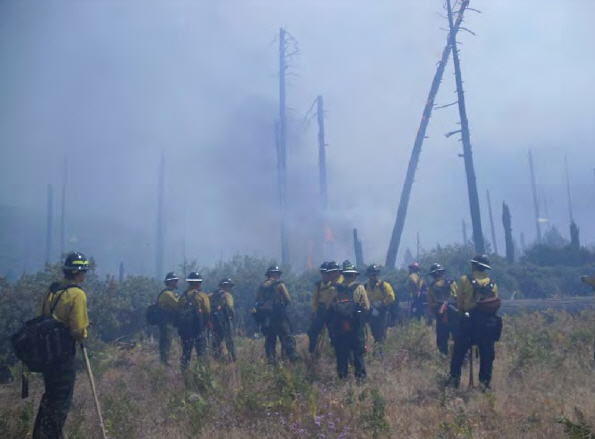 The area where the fire initially escaped, showing large numbers of snags outside the burn unit, with several burning.
