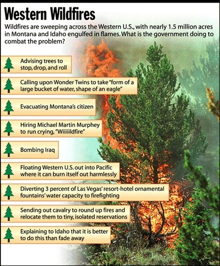 Wildfire Infographic satire