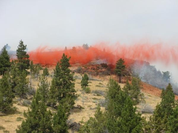 Warm springs fire
