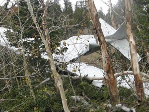 plane crash, nps employees