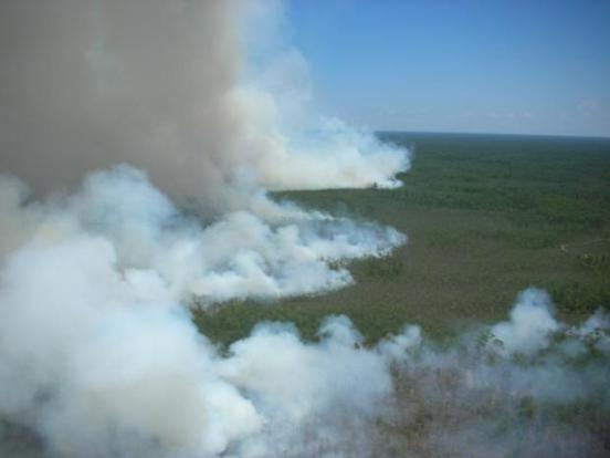 Jarhead fire in Big Cypress National Preserve