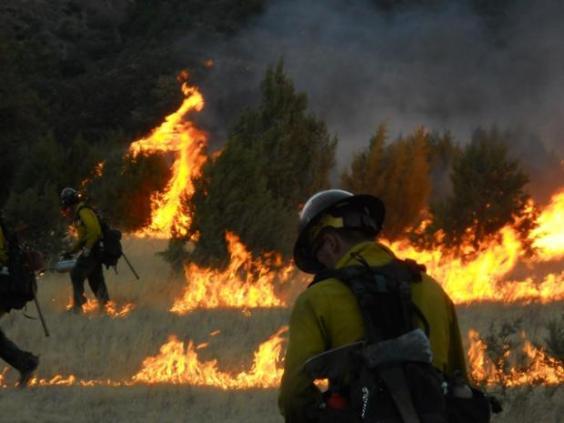 Horseshoe 2 fire, burning out