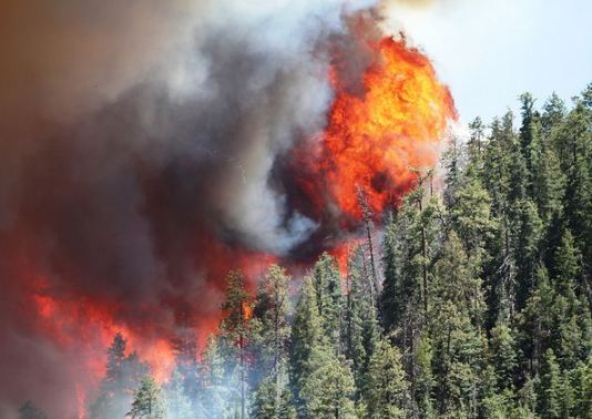 Wallow fire ball of flames, 6-8-2011