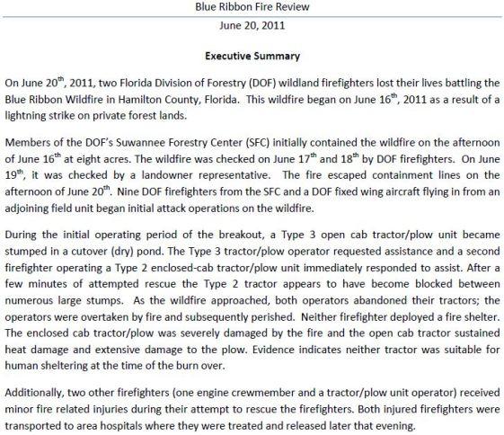 Blue Ribbon fire report, Executive Summary