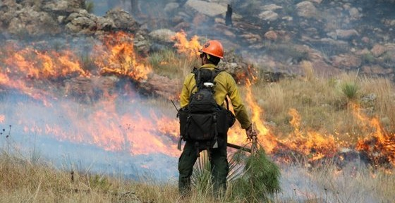 Firefighter on the Shep Canyon fire in South Dakota, September 6, 2011