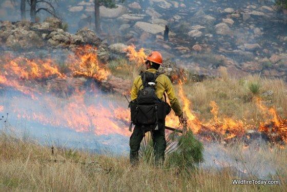 Firefighter on the Shep Canyon fire in South Dakota, September 6, 2011