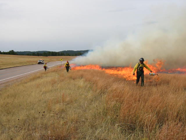 Ignition of Bison Flats prescribed fire
