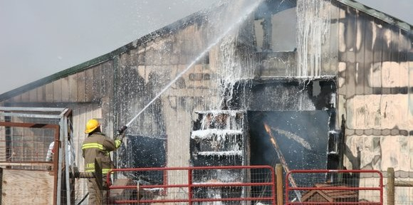 Humane Society fire, Hot Springs, SD