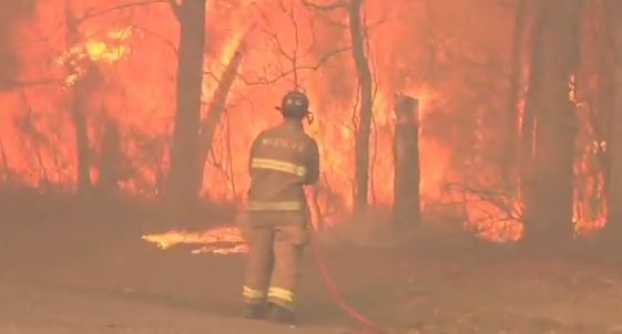 Long Island wildfire