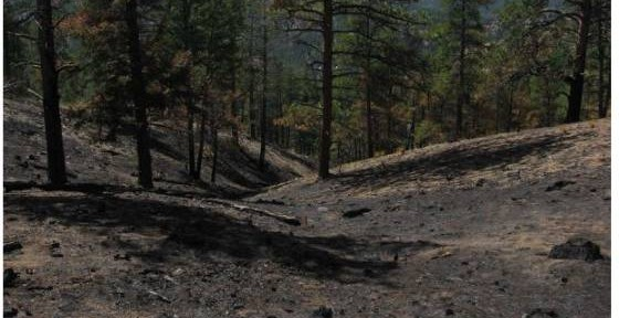 Lower North Fork Fire downslope draw