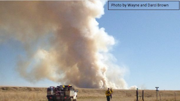 Photo of wildfire smoke column in Richland County, Montana