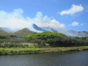Hawaii fire