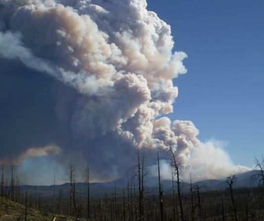 Whitewater-Baldy fire and an old fire scar, May 22. InciWeb photo