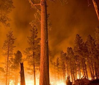 Excellent photo of Whitewater-Baldy fire