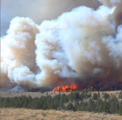 Sheep Herder Hill Fire, Photo by Wyoming State Forestry Division