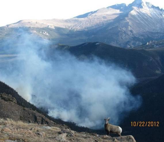 Fern Lake Fire