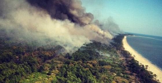 St.Vincent Island prescribed fire