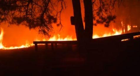 West Ash trail camera, fire