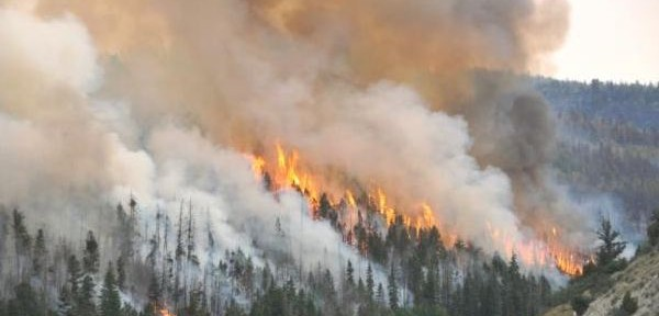 Logging slash may have smoldered for 18 months before igniting Utah wildfire