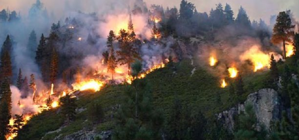 NPS releases report on Lassen National Park's Reading Fire