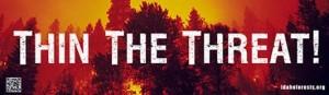 Thin the Threat bumper sticker