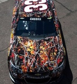 Wildfire wrap on car
