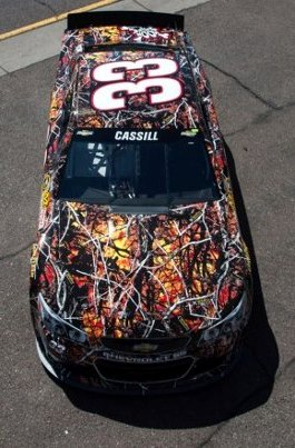 ... NASCAR race Sunday when I saw a race car covered in a wildfire pattern