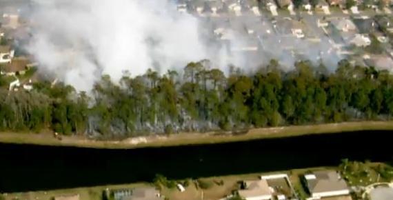 Brush fire, Port Orange, FL