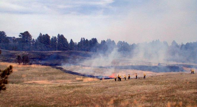 Meadow prescribed fire, Devils Tower NM