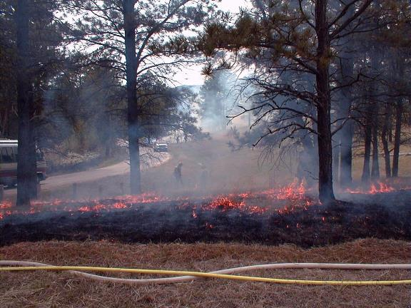 Devils Tower prescribed fire