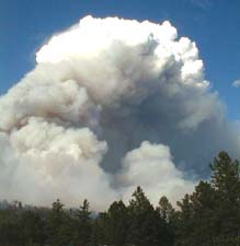 Pyrocumulus on the Jasper Fire