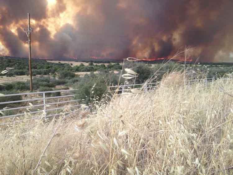 Yarnell Fire