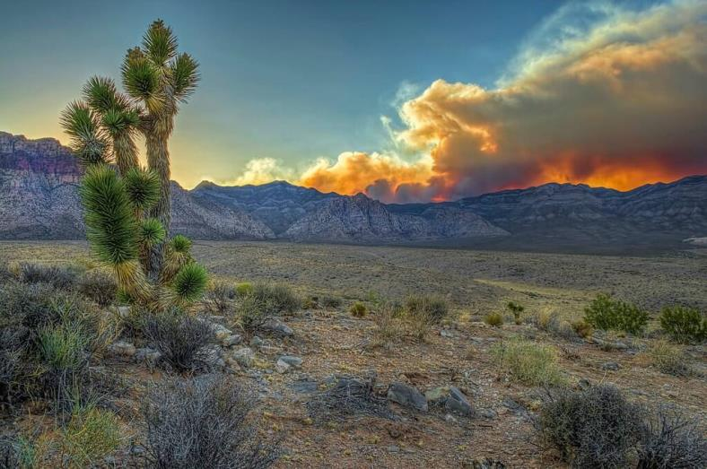 Nevada Carpenter 1 Fire Wildfire Today