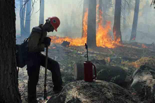 Horseshoe Meadows Hotshots Rim Fire