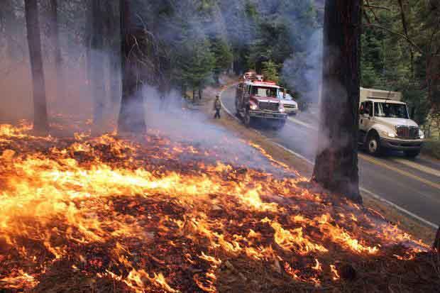 Rim Fire burnout