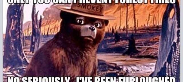 Smokey Bear furloughed