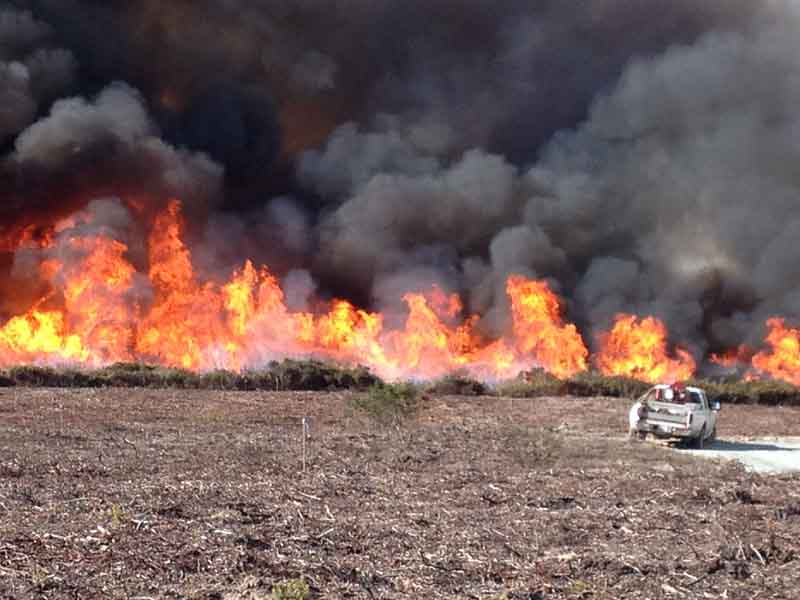 Fort Ord prescribed fire 10 a.m. October 15, 2013