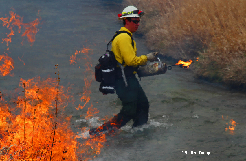 Fall River prescribed fire