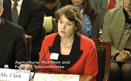 Sallie Clark, El Paso County Commissioner, Colorado