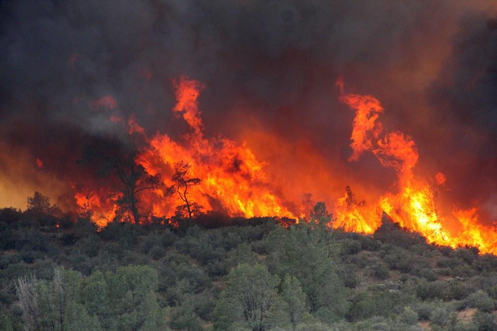 Shirley Fire June 14, 2014
