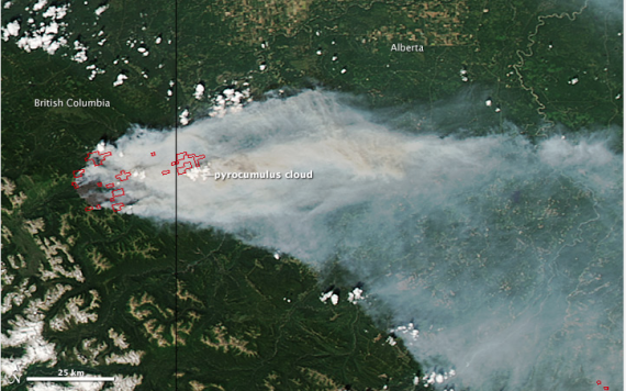 Pyrocumulus clouds seen from space--NASA Earth Observatory.