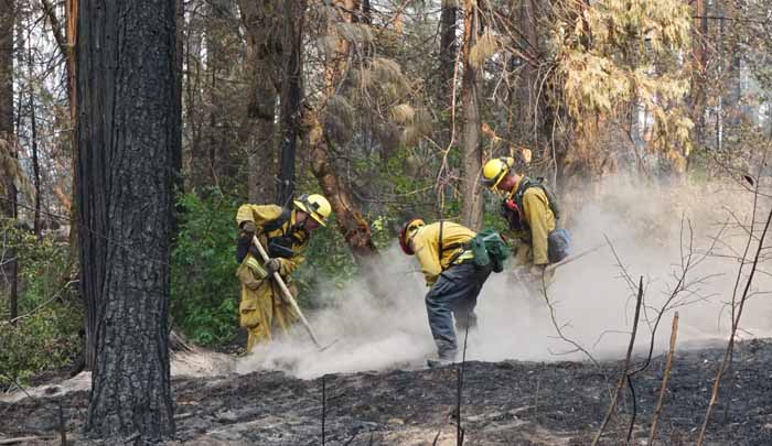 Tahoe Douglas engine crew mopping up in the Eiler Fire. Photo by Bill Gabbert.