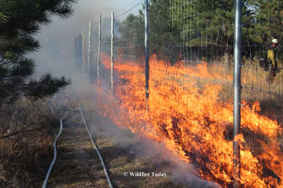 Norbeck prescribed fire