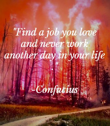 Confucius job you love