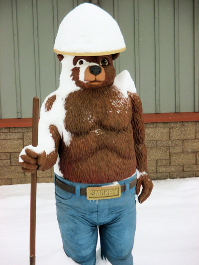 Smokey Bear snow
