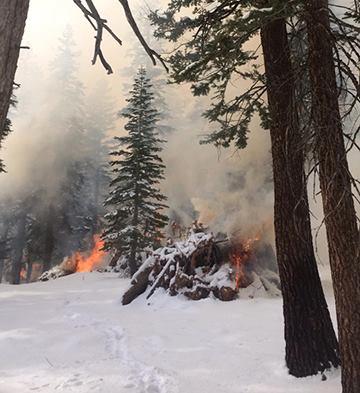 pile burning Inyo National Forest